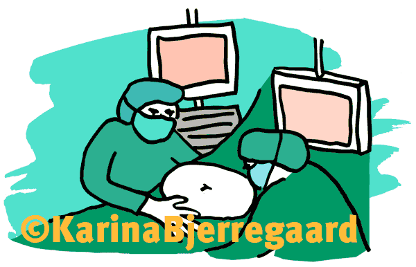 karina_bjerregaard_operation