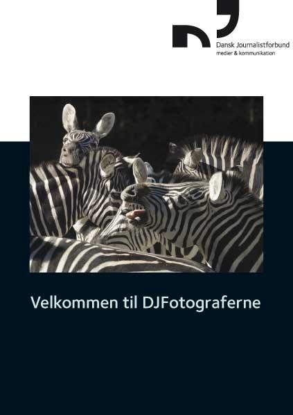 karina_bjerregaard_fotofolder