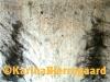 karina_bjerregaard_valentin3